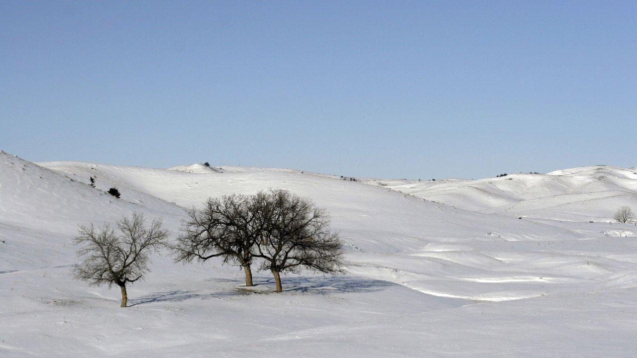 ветер босиком пробежал: