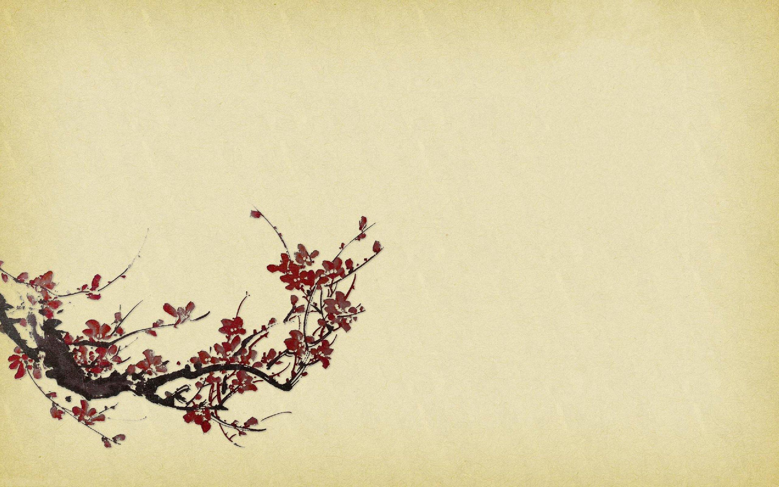 przyroda-kwiaty-2560-1600-8247.jpg