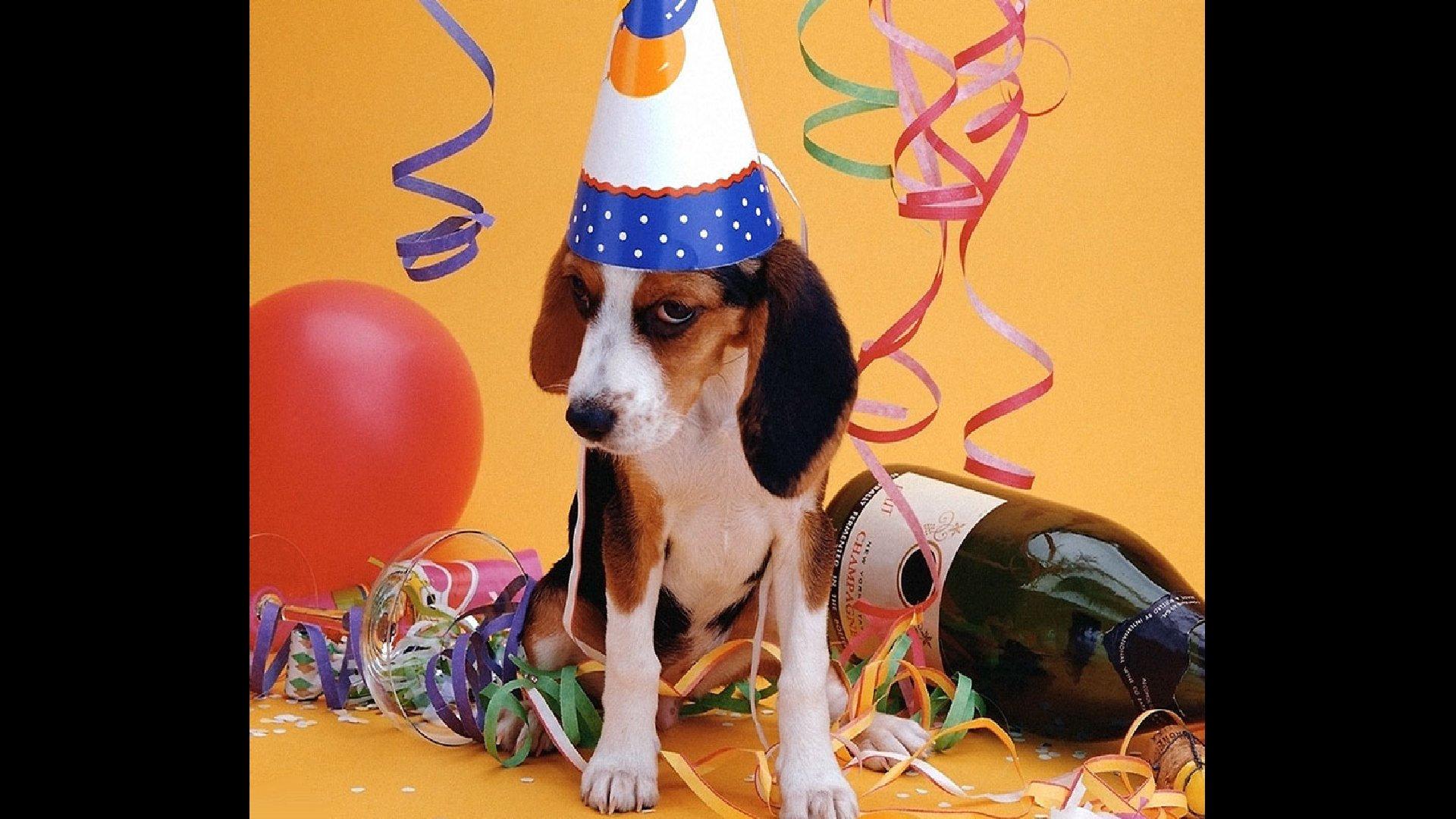 Грустные поздравления с днем рождения бывшему