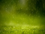 raining_in_the_grass-1920x1080
